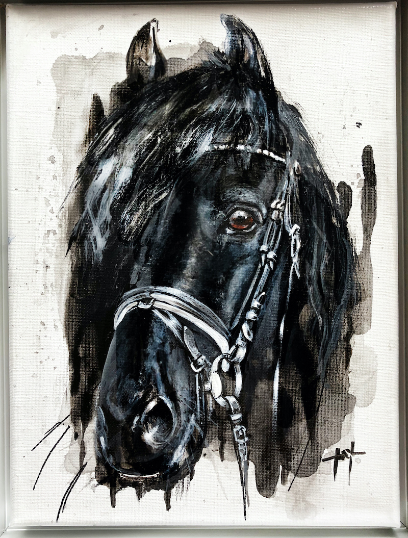 FRIESE / FRIESIAN HORSE
