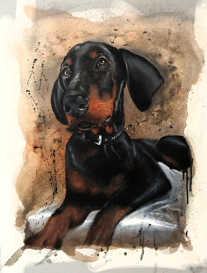 Vasco (Dobermann)
